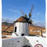 Wyspy Kanaryjskie – Fuerteventura i Lanzarote
