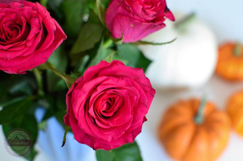 rozowe-roze